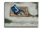 Obras de arte: Europa : España : Comunidad_Valenciana_Alicante : VILLENA : Bote de Pepsi