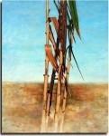 Obras de arte: Europa : España : Comunidad_Valenciana_Alicante : VILLENA : Cañas