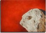 Obras de arte: Europa : España : Comunidad_Valenciana_Alicante : VILLENA : Caracol pequeño