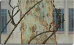 Obras de arte: Europa : España : Comunidad_Valenciana_Alicante : VILLENA : Rosal enredado