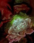 Obras de arte: America : Uruguay : Canelones : Canelones_Departamento : Rosas de la noche