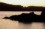 Obras de arte: Europa : España : Galicia_La_Coruña : Coruna : Pescando al atardecer