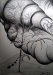 Obras de arte: America : Chile : Valparaiso : viña_del_mar : El viento y los escarabajos (Pablo Cordova MORE)