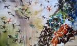 Obras de arte: America : México : Veracruz-Llave : Xalapa : zonas expulsoras