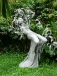 Obras de arte: America : México : Chiapas : Tapachula : Arbol de Amate