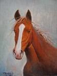 Obras de arte: America : Chile : Bio-Bio : Concepción : cabeza de caballo