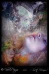 Obras de arte: America : Costa_Rica : San_Jose : Coronado : Sweet Dreams (Dulces Sueños)