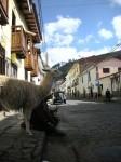 Obras de arte: Europa : España : Andalucía_Almería : Almeria : Cuzco