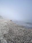 Obras de arte: Europa : España : Andalucía_Almería : Almeria : Figura en la niebla