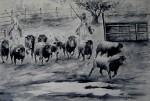 Obras de arte: Europa : España : Madrid : Pinto : Toros en el campo