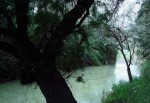 Obras de arte: Europa : España : Murcia : cartagena : El rio que nos lleva...