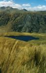 Obras de arte: America : Perú : Lima : Surco : Una laguna escondida