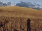 Obras de arte: America : Perú : Lima : Surco : El estar y no estar