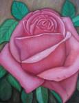 Obras de arte: Europa : España : Catalunya_Barcelona : Barcelona : Rosa rosa