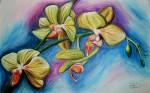 Obras de arte: America : Colombia : Antioquia : Medell�n : Verde Orquidea
