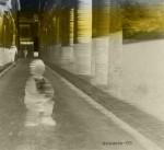 Obras de arte: Europa : España : Valencia : camp_de_morvedre : passant desprevingut