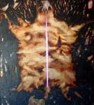 Obras de arte: America : Colombia : Santander_colombia : PIEDECUESTA : ANIMA-L SERIE VESTIGIOS
