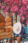 Obras de arte: America : México : Baja_California_Sur : lapaz : El Descanso