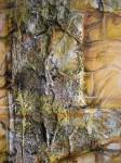 Obras de arte: America : Ecuador : Pichincha : Quito : Manto Sagrado