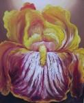 Obras de arte: America : Ecuador : Pichincha : Quito : De Pasion