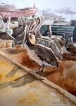 Obras de arte: America : Chile : Tarapaca : Arica : Pelícanos en caleta