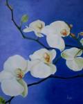 Obras de arte: Europa : España : Euskadi_Álava : Vitoria : Orquideas blancas