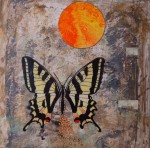 Obras de arte: Europa : España : Catalunya_Barcelona : Sant_Esteve_de_Palautordera : Sol i papallona Papilio Alexanor