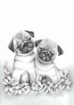 Obras de arte: America : Venezuela : Aragua : Maracay : Puppies