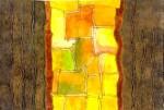 Obras de arte: America : México : Oaxaca : oaxaca_centro : fragmentos de codice solar