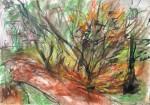 Obras de arte: America : Argentina : Buenos_Aires : CABA : Selva en Hallandale