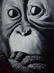 Obras de arte: Europa : España : Catalunya_Lleida : Lleida_ciudad : Monkey