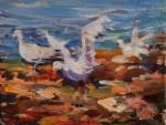 Obras de arte: Europa : España : Islas_Baleares : palma_de_mallorca : Gaviotas