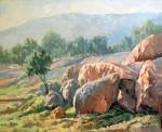 Obras de arte: Europa : España : Andalucía_Córdoba : Priego_de_Cordoba : Olivos y rocas