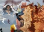 Obras de arte: America : México : Morelos : cuernavaca : sueño lucido