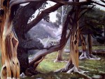 Obras de arte: America : Estados_Unidos : Florida : orlando : DEAD FOREST PARK