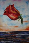 Obras de arte: America : Colombia : Antioquia : Envigado : Rosa 2005