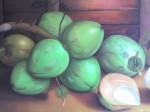 Obras de arte: America : Rep_Dominicana : Santiago : loma_de_cabrera : Cocos