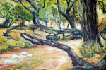 Obras de arte: Europa : España : Catalunya_Tarragona : Valls : paisaje de la patagonia