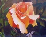 Obras de arte: America : Paraguay : Asuncion : Asuncion-capital : Rosa Oro Rubí II