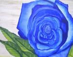 Obras de arte: America : Paraguay : Asuncion : Asuncion-capital : Rosa Azul