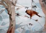 Obras de arte: America : Chile : Tarapaca : IQUIQUE : ave cúbica