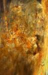 Obras de arte: America : Argentina : Neuquen : neuquen_argentina : TEXTURA II