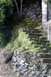 Obras de arte: Europa : España : Canarias_Santa_Cruz_de_Tenerife : La_Laguna : Vieja escalera