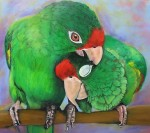 Obras de arte: America : Panamá : Chiriqui : Volcán : mmmmmmyeah