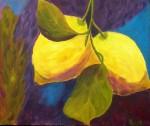Obras de arte: Europa : España : Canarias_Las_Palmas : Maspalomas : limones en el aire