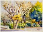 Obras de arte: Europa : España : Andalucía_Huelva : ARACENA : JARDIM DE ARRUDAS DOS VINHOS