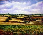 Obras de arte: Europa : España : Madrid : Las_Rozas : Campos con girasoles