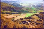 Obras de arte: America : Chile : Region_Metropolitana-Santiago : La_Reina : paisaje
