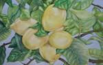 Obras de arte: Europa : España : Andalucía_Granada : churriana : Mi limón, mi limonero...