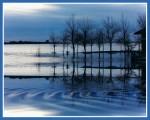 Obras de arte: America : Argentina : Buenos_Aires : Capital_Federal : Chascomús inundado azul